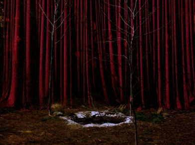 The entrance to the Black Lodge, surrounded by Sycamore Trees.